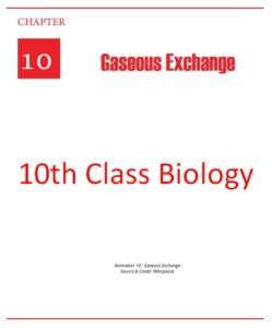 10th Class Biology Full Book PDF English Medium (Punjab Education)